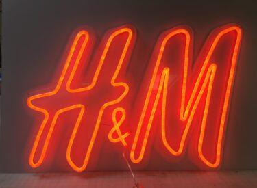 LED-HM (1)